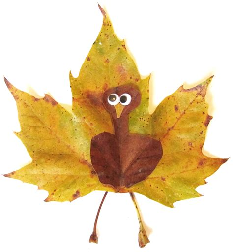 thanksgiving leaves bing images
