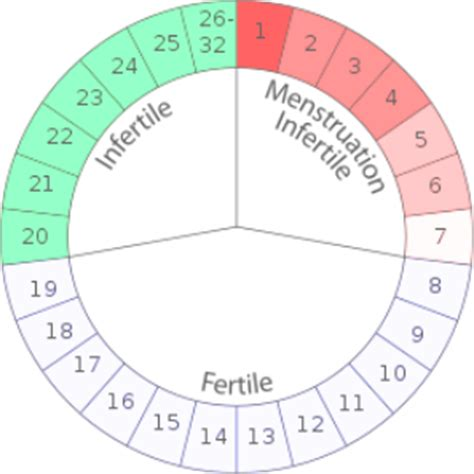 Calendar Rhythm Method What Should You About The Rhythm Method Womens Health