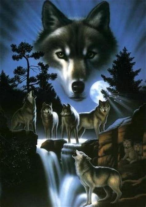 imagenes tumblr lobos lobos imagens e fotos para facebook pinterest whatsapp