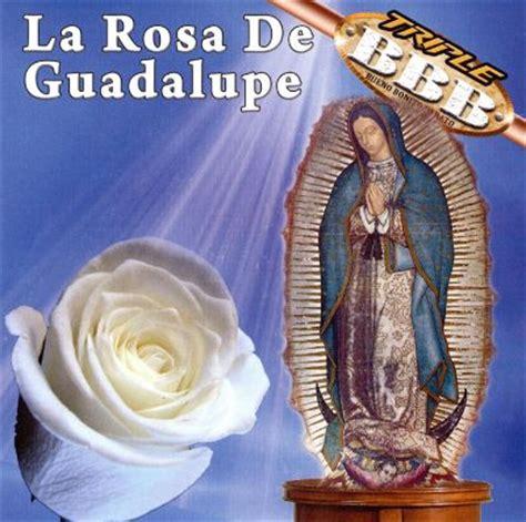 Larosa De Guadalupe | la rosa de guadalupe las flores indira montes similar