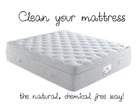 Clean Mold From Mattress by 17 Best Images About How To On Ants Mattress