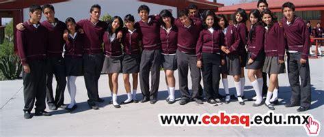 colegio de bachilleres del estadode quertaro cobaq plantel 18 cobaq 5