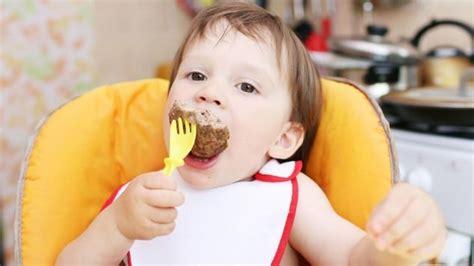 carenza di ferro alimentazione carenza di ferro nei bambini paginemamma