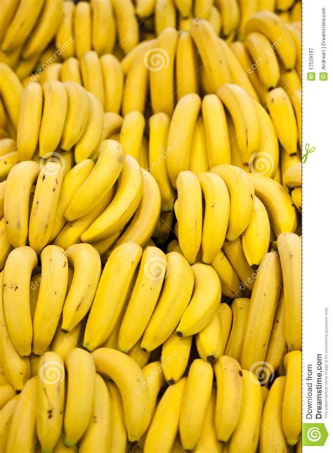 Architecture Plans by Many Bananas Royalty Free Stock Photography Image 17529197
