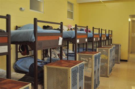 shelter miami miami homeless shelter infested with bed bugs wlrn