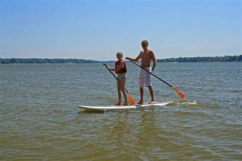 paddle boat rentals holland mi stand up paddle boarding in lake michigan picture of