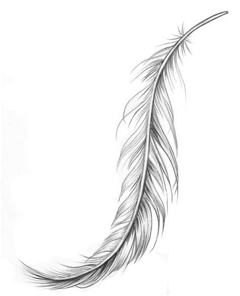 feather tattoo to draw nice feather tattoo design