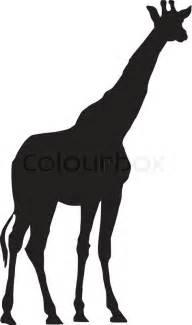 vector image of giraffe stock vector colourbox