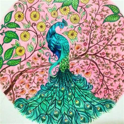 secret garden colouring book instagram 28 best coloring johanna basford peacock images on
