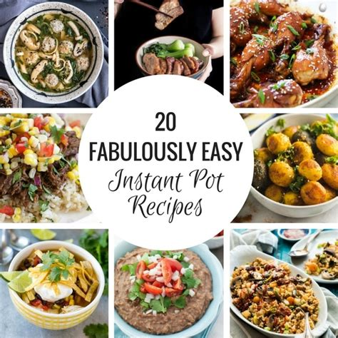 instant potâ cookbook 550 delicious recipes for everyday cooking books the easy pressure cooker cookbook