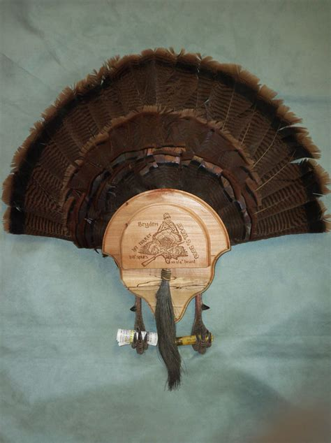how to mount a turkey fan turkey fan mount images