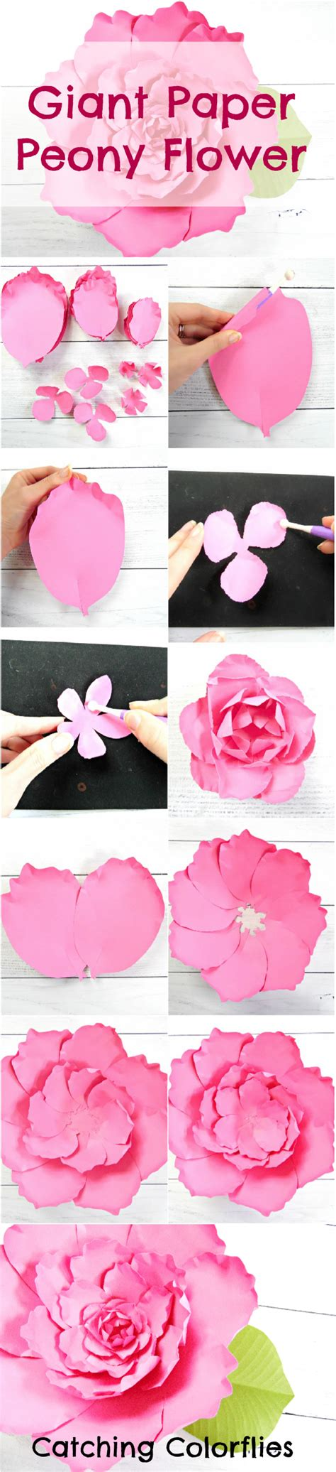 paper flower tutorial template giant peony paper flower tutorial catching colorlfies