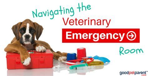 the pet emergency room emergency vets near me pets world