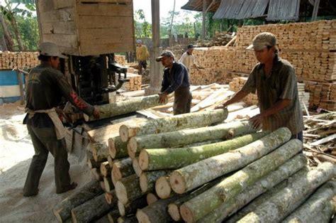 Bps Manfaatnya pohon albasia dan manfaatnya the wonosobo centre