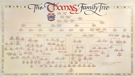 fancy family tree template images templates design ideas
