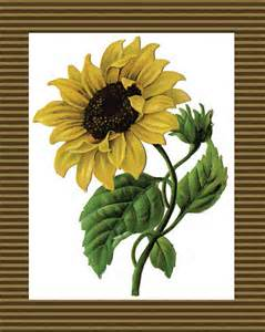 sunflower printable items similar to instant 8x10 print
