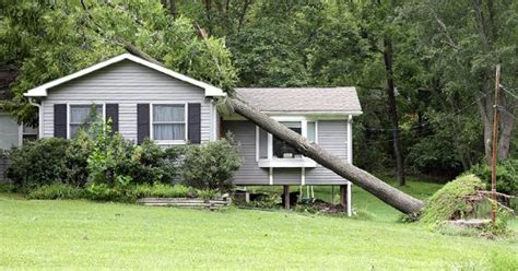 tree falls on house insurance tree falls on house insurance 28 images tree archives insurancehub tree damage