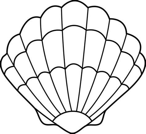 seashell coloring pages preschool seashell drawing lovely zigzag scallop seashell drawing