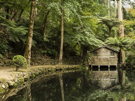 Holiday Cottages Torquay by Restaurants Food And Wine Yarra Valley And Dandenong
