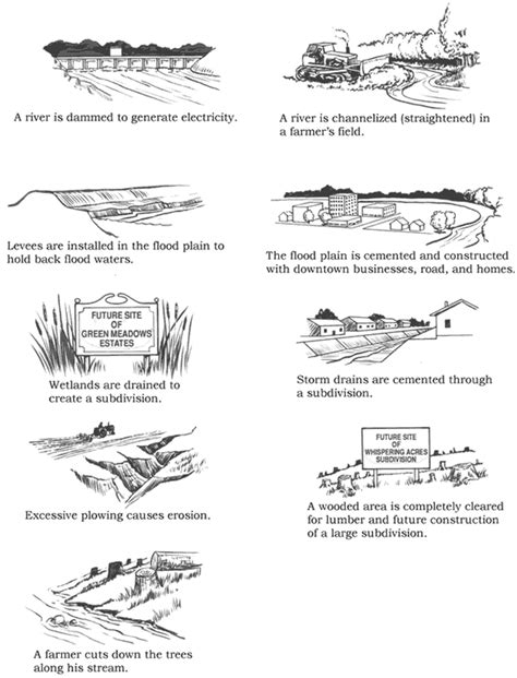 bill nye plants worksheet erosion worksheets high school deployday
