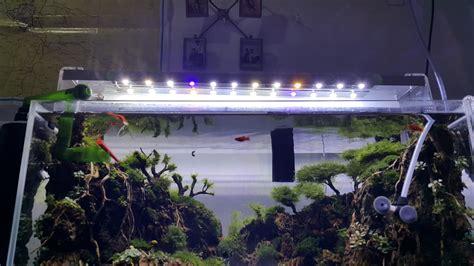 Lu Led Aquascape 60 Cm jual lu aquarium aquascape diy led 60 cm 36 watt