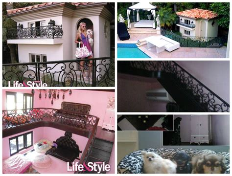 Socialite Paris Hilton S Dogs Live In Extravagant Doggie Mansion Her Dog House Cost