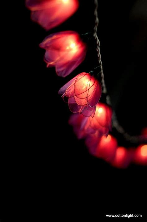 20 Purple Tulip Flower Handmade String Light Lantern Lantern String Lights Indoor