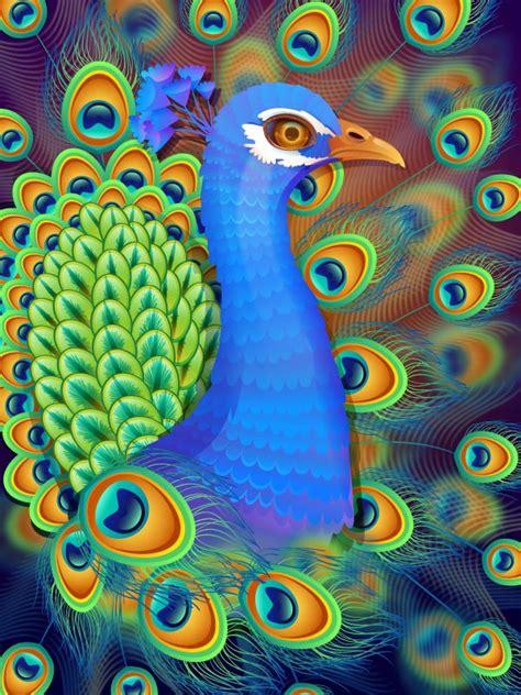 illustrator name tutorial create a vibrant peacock in adobe illustrator
