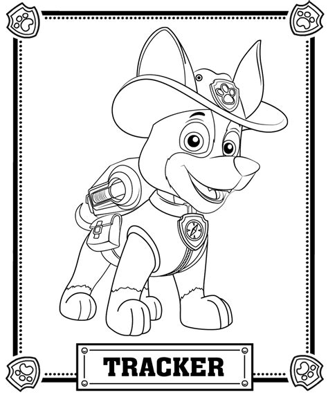 paw patrol super spy chase coloring pages patrulha canina tracker desenhos para colorir