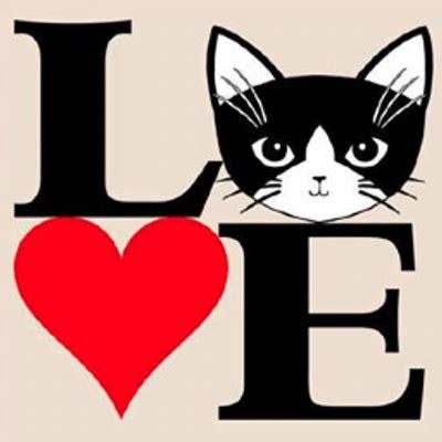 Kaos Fangkeh Lover Cat V Ii cat thtcrazycatlady