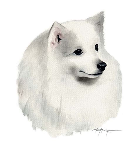 pin by art dog sea japanese on dolphin swim pinterest underwater japanese spitz dog watercolor painting water colours