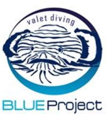 blue dive shop blue project dive shop dive shop cozumel mexico scuba