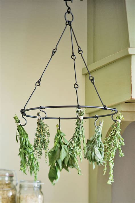 herb drying rack  preserving herbs gardeners supply