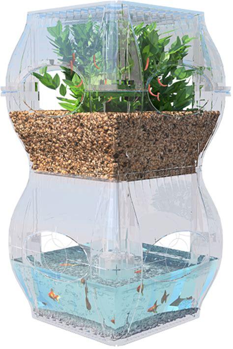 The Garden Fish Tank Future Sustainability And Indoor Fish Tank Vegetable Garden