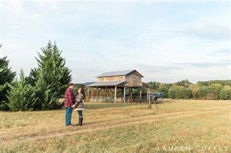 christmas tree farms huntsville al lizardmedia co