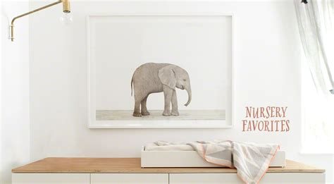 Nursery Art   The Animal Print Shop by Sharon Montrose