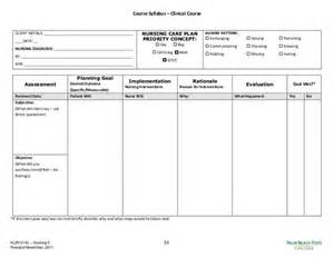 blank nursing care plan templates search