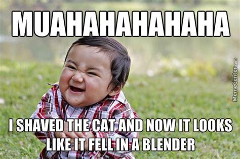 Bad Kitty Meme - pin bad kitty memes 2123 results on pinterest
