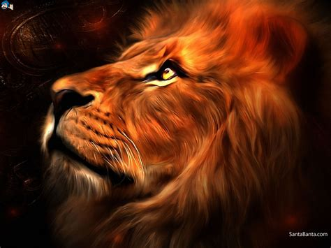 wallpaper abstract lion abstract creative lion wallpaper 6583 wallpaper computer