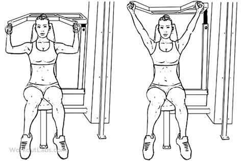 seated barbell press machine seated shoulder press workoutlabs
