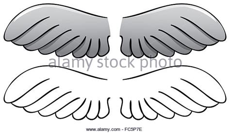 Bird Wings Outline by Bird Wings Outline Stock Photos Bird Wings Outline Stock Images Alamy