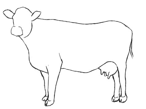 easy to draw clipart cow drawing clipart best