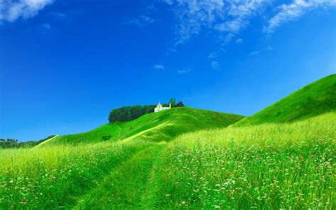 house on the hill desktop wallpaper wallpapers grassy hills wallpapers
