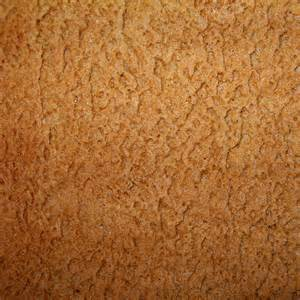 Gingerbread texture flickr photo sharing