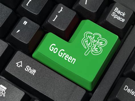 Easy Ways Employees Can Green Their Office