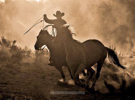 imagenes vaqueras en sombra colecci 211 n de fotograf 205 as xxxvii el blog de gorka iriondo
