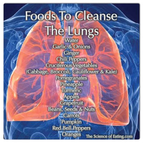 Lung Detox Diet foods to help health issues