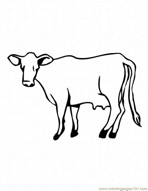 hereford cow coloring page free coloring pages of angus bull