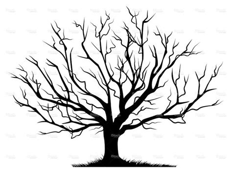 Leafless Tree Branch Outline by Bare Treetemplate 点力图库