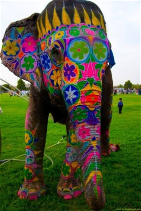 artswirled painted elephants